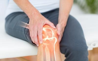 Com'è fatto un ginocchio?